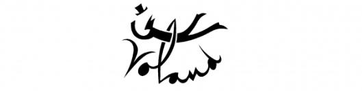 Logo Voland